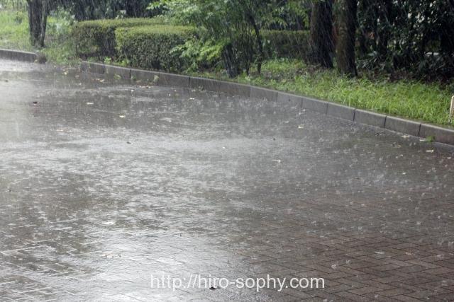 道路に雨が降り続く