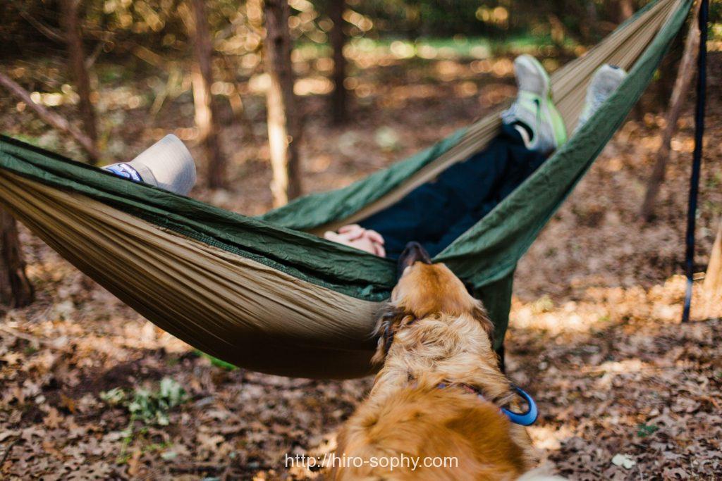 ハンモックで寝ている人と犬