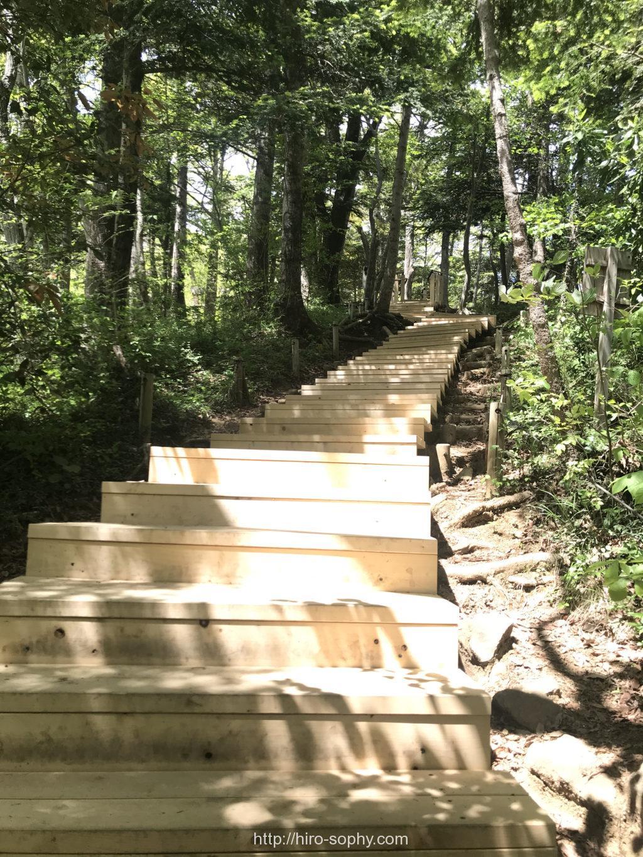 高尾山の6号路の階段