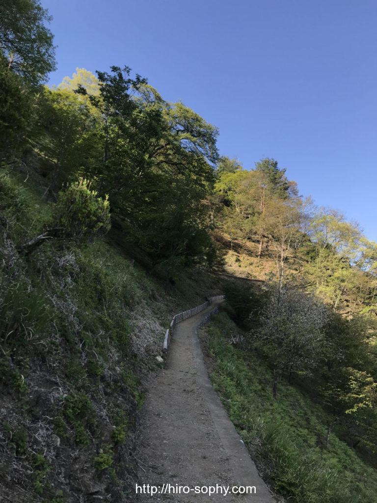 見はらしの丘までの道